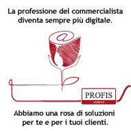 Rosa-profis-fe_s